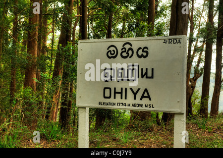 A road signpost at Ohiya Sri Lanka - Stock Photo