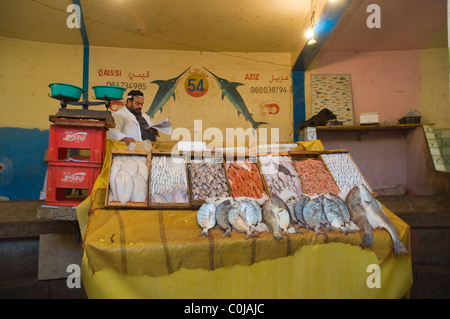 Fish stall at the seafood market in Marina harbour Agadir the Souss southern Morocco Africa - Stock Photo