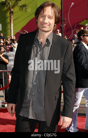 David Duchovny World Premiere Of The X Files 'I want to Believe' at the Grauman Chinese theater Hollywood, California - Stock Photo