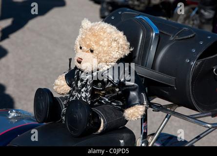 Teddy bear sat on motorcycle - Stock Photo