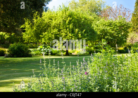 The lawn of an English country garden surrounded by trees, shrubs, flower beds and borders in Wiltshire, England, - Stock Photo