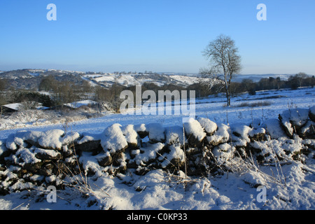 Winter landscape scene towards Stanton Moor, Peak District National Park, Derbyshire with drystone wall and single - Stock Photo