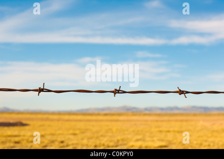 Detail of a barbed wire fence in rural New Mexico landscape. - Stock Photo