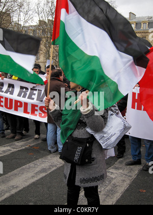 Paris, France, Public Demonstration, in Support of Arab Revolutions, Woman Holding Palestinian flags, Arab Spring - Stock Photo