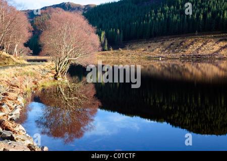 Reflections in Loc Achaidh na h'Inich in Strathellen near Plockton Wester Ross Scotland UK - Stock Photo