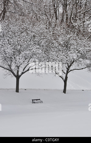 Bench and trees covered under snow in Albany Washington Park. - Stock Photo