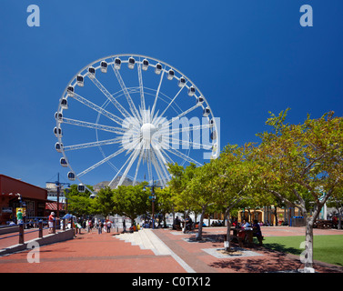 The Wheel of Excellence on V&A Waterfront in Cape Town. Western Cape, South Africa. - Stock Photo