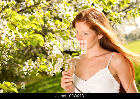 Long red hair woman in white dress standing under blooming tree - Stock Photo