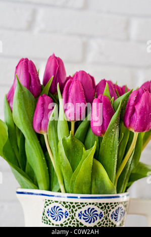 A bunch of purple tulips in a vase against a white wall - Stock Photo