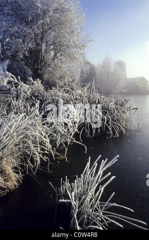 The hoar-frost covered trees growing on the bank of fishing pond in Barby, Warwickshire, UK. - Stock Photo