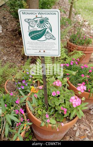 Orlando Florida Sanford Central Florida Zoo And