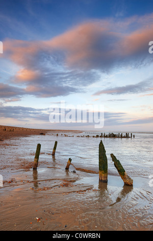 Old wooden sea defences at Winchelsea beach - Stock Photo