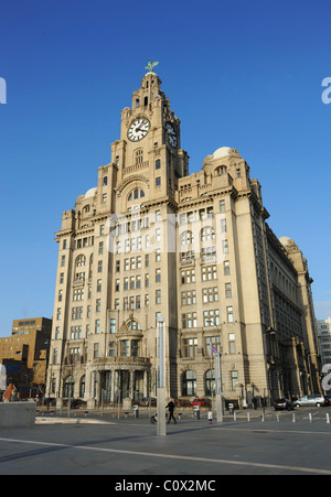 Royal Liver Building, Pier Head, Liverpool, UK - Stock Photo