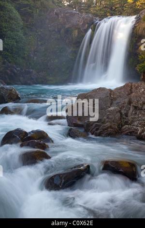 Tawhai Falls (Whakapapanui Stream), Tongariro National Park, North Island, New Zealand - Stock Photo