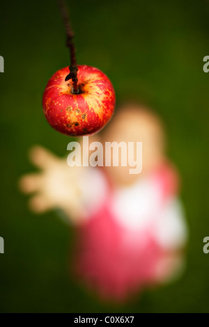Girl reaches for red apple on tree - Stock Photo