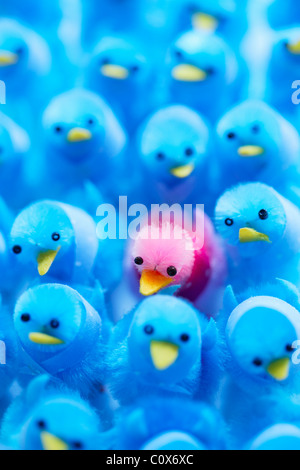 Pink Power, standing out from the crowd. - Stock Photo