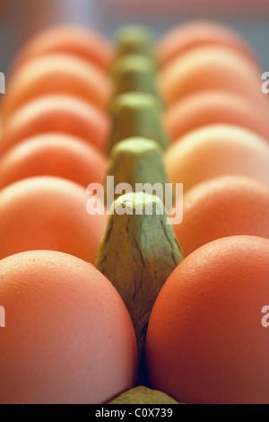 Organic free range chicken eggs in green egg box. - Stock Photo