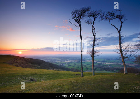 View looking northwest from Chanctonbury Ring - Stock Photo