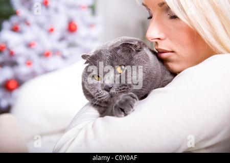 xmas portrait of a cat - Stock Photo
