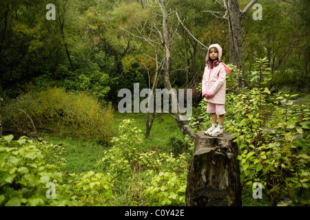 Six year old girl in pink stands on tree stump in woodland, New Zealand - Stock Photo