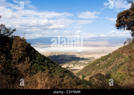 View into Ngorongoro Crater from the Ascent Road Tanzania - Stock Photo