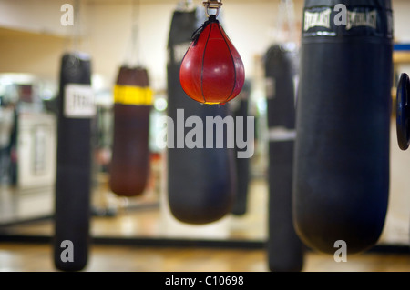 Punching bags at a gym in New York on Tuesday, March 1, 2011t. (© Richard B. Levine) - Stock Photo