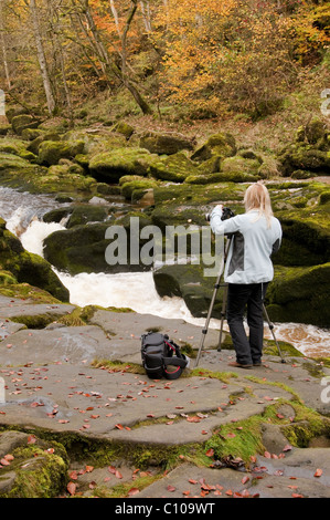 A woman about to take a photo where the River Wharfe passes through The Strid, near Bolton Abbey. - Stock Photo