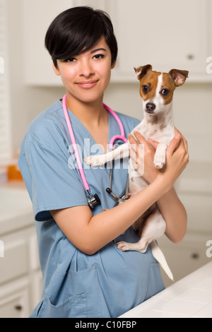 Smiling Attractive Mixed Race Veterinarian Doctor or Nurse with Puppy in an Office or Laboratory Setting. - Stock Photo
