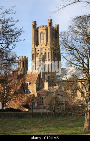 Ely Cathedral seen from the south. This view shows the 12th century west tower. - Stock Photo