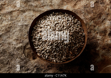 Rye grains (Secale cereale) in a copper bowl on a stone surface - Stock Photo