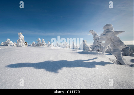 Figure with shadow, winter on Mt Brocken in the Harz, black and white, Blocksberg Mountain, Harz National Park, - Stock Photo