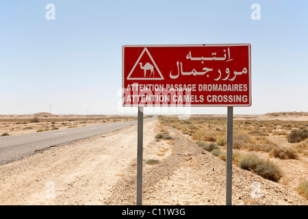 Camel crossing traffic sign in the Sahara, Africa - Stock Photo