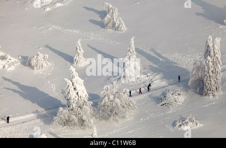 Aerial view, Mt. Kahler Asten, snow-covered pines, walkers, snow, winter, Winterberg, North Rhine-Westphalia, Germany, - Stock Photo