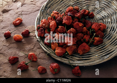 Dried mini peppers (Capsicum), tipped from a wicker plate on sandstone - Stock Photo