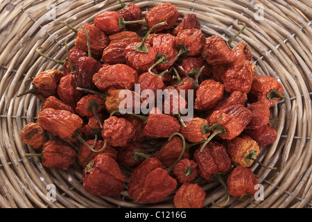 Dried mini peppers (capsicum) in a woven basket - Stock Photo
