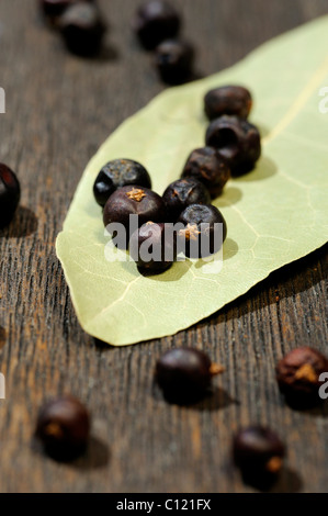 Dried juniper berries and bay leaf - Stock Photo