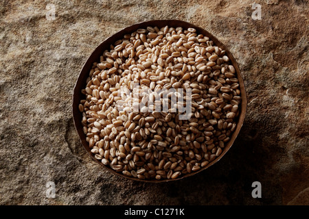 Wheat grains (Triticum) in a copper bowl on a stone surface - Stock Photo