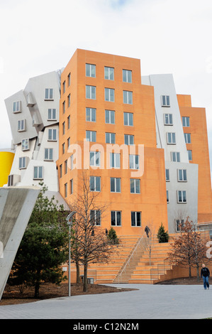 Young woman walks by famous architect Frank Gehry designed Ray and Maria Stata Center at MIT, Massachusetts institute of Technology, Cambridge MA