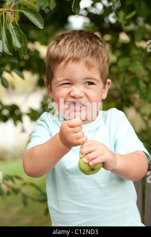 little boy making funny face while pulling stem from pear - Stock Photo