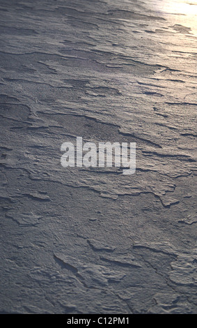 Sunlit surface - Stock Photo