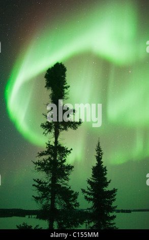 Aurora Borealis or Northern Lights, Northwest Territories, CANADA - Stock Photo