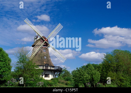 Windmill, Pommerby in the Angeln region on the Schlei River, Schleswig-Holstein, Germany, Europe - Stock Photo