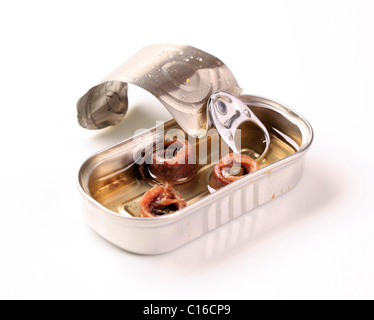 Tin of rolled anchovy fillets in olive oil - Stock Photo