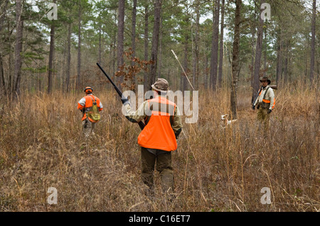 Upland Bird Hunters, Guide and Bird Dog during a Bobwhite Quail Hunt in the Piney Woods of Dougherty County, Georgia - Stock Photo