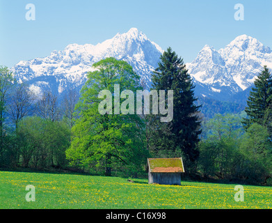Landscape near Fuessen, Thannheim Range, spring, east Allgaeu, Bavaria, Germany, Europe - Stock Photo