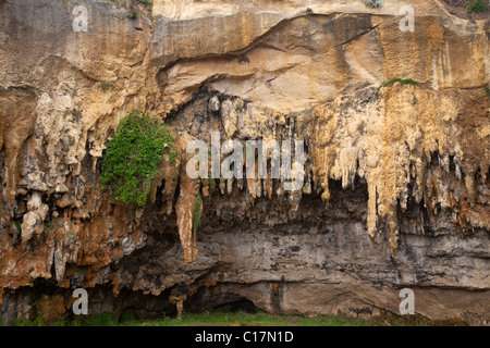 exposed cave, Loch Ard Gorge area, Port Campbell National Park, along the Great Ocean Road, Victoria, Australia - Stock Photo