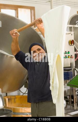 Bison mozzarella production - Stock Photo