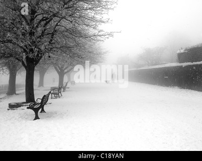 Man and dog in the snow. Shaftesbury england Winter snow scene England - Stock Photo