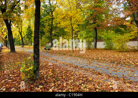 Autumnal path along the wall of the Ostfriedhof, cemetery in the east of Munich, Bavaria, Germany, Europe - Stock Photo