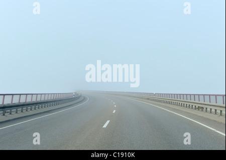Foggy road - Stock Photo